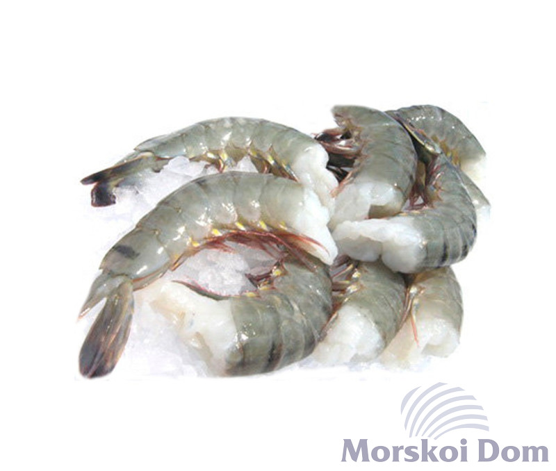 Tiger Prawns Head Less, Box 21/25 1,8 kg