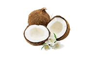 Coconut Milk and Coconuts' Products