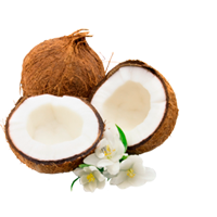 Coconuts' Products